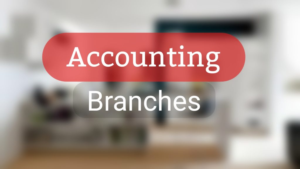 branches or Types of Accounting