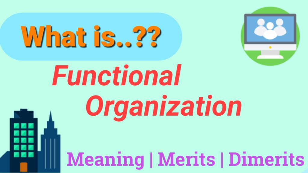 Advantages and Disadvantages of Functional Organizational Structure