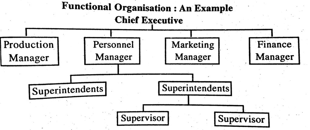 sample functional organizational structure chart