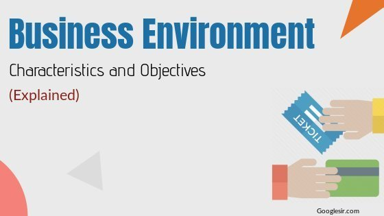 characteristics and objectives of business environment