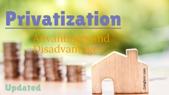 advantages and disadvantages of privatization