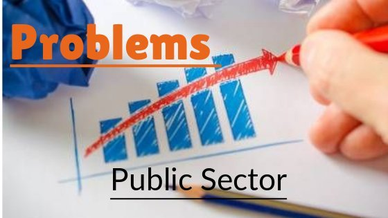 major problems of public sector