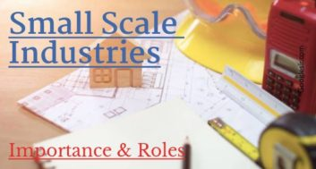 Importance and Role of Small-Scale Industries