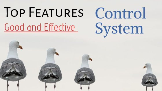 features of effective management control system