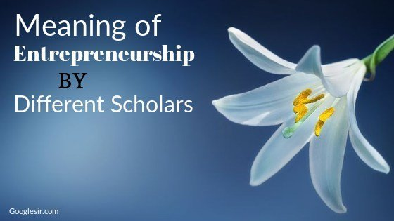 definition of entrepreneurship by different scholars