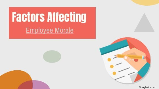 factors affecting employee morale in an organization