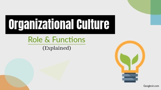 What is the role of Organisational culture?